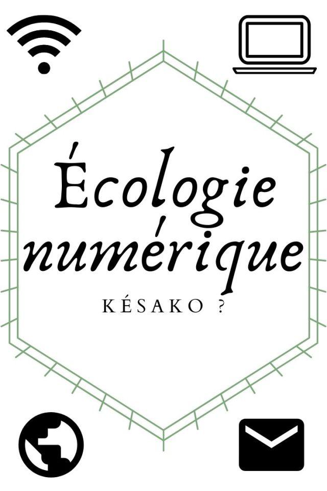 Écologie numérique
